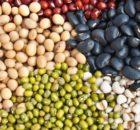 Hochwerties Eiweiß und Ballaststoffe