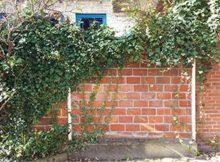 Reparatur von Grenzmauern – vorbeugen statt streiten