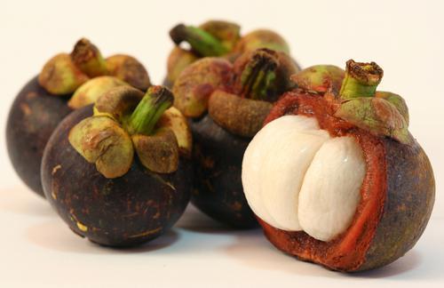 Der Nachfolger von Aloe vera heißt Mangostan-Frucht