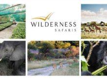 Wilderness Safaris vereint Luxus mit einem guten Zweck