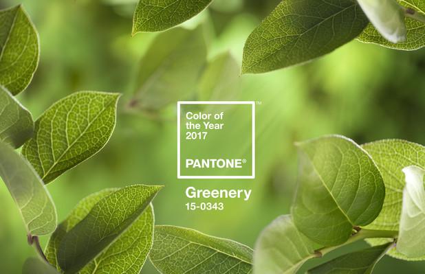 Farbe-des-Jahres-2017 in Grüner wirds nicht!