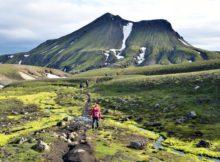 Ein (Natur-)Erlebnis: Hauser-Reisen durch Nordeuropa