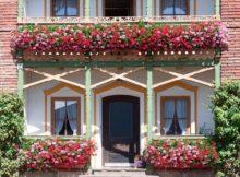 Die Deutschen lieben ihre Blumen - im Garten und im Blumenkasten