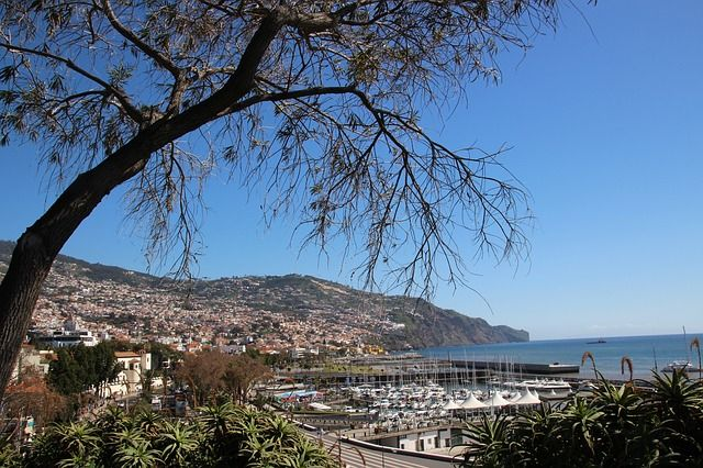 Die-Hauptstadt-Funchal-liegt-direkt-am-Meer in Madeira - ein Geheimtipp der längst keiner mehr ist