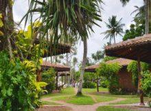 Neu auf Sri Lanka: Barberyn Sands Ayurveda Resort