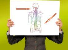 Die häufigsten Ursachen für Beschwerden und Schmerzen an der Wirbelsäule