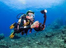 Gemeinsam mit dem Campese Diving Center organisiert Aquanautic Elba diesen Fotocontest,