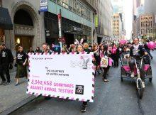 Am gestrigen Welttierschutztag machten sich The Body Shop und Cruelty Free International in New York auf den Weg zu den Vereinten Nationen