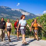 VinoVia WeinWanderreisen feiert 10 jähriges Bestehen
