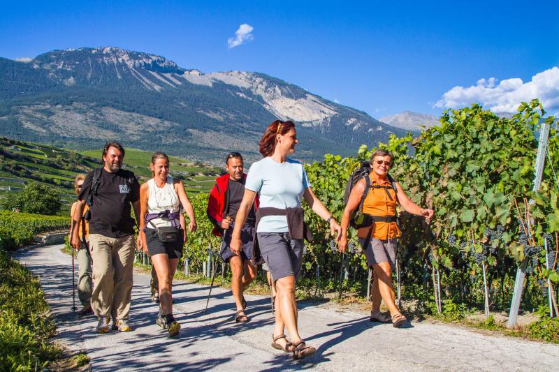 Unterwegs auf WeinWanderung