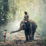 Traumreiseziel Indien: Aufgepasst, denn nichts geht ohne Visum!