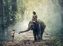 Exotik, Kultur und Natur - ein Land so vielfältig wie die halbe Welt