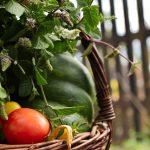 Herbstblues vermeiden: Goldene Sonnenstrahlen, kalte Tage, heisse Tipps!