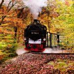 Sonne und Meer: 10 Gründe für einen Herbsturlaub auf Rügen