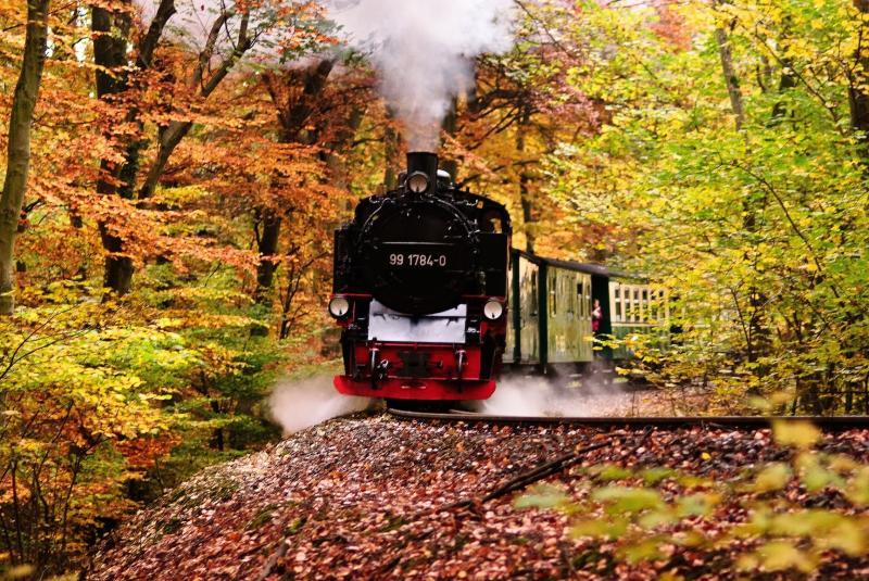 Rasender Roland im Herbstwald, Bild: A.Fischer auf pixabay