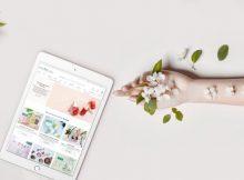 Der Naturkosmetik-Onlineshop Ecco Verde arbeitet jetzt klimaneutral