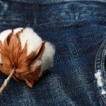Wachsendes Umweltbewusstsein: Jetzt auch Kaufland mit nachhaltiger Kleidung
