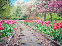 Hol Dir die Farben des Frühlings ins eigene Heim