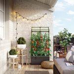 Balkongemüse: Urbane Garten-Oase mit Bio Greens City Jungle