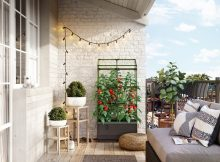 Urban Gardening mit Bio Greens City Jungle