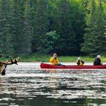 Die einzigartige Trapper- und Golddiggerregion im Nordwesten Kanadas