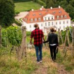 Weinanbaugebiet Sachsen: Konzerte, Verkostungen und Weinbergwanderungen
