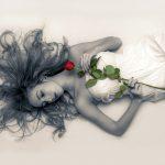 Ohne Rose keine Schönheit: Königin der Blumen und Inbegriff von Romantik und Sinnlichkeit