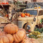 Karls Erlebnis-Dörfer: Spektakuläre Riesenkürbisse, Kürbismarkt und vieles mehr