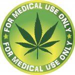 Das breite Angebot an Cannabispflanzen