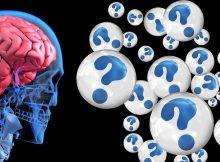 """""""Wer sein Gehirn trainiert, geht als Sieger hervor."""""""