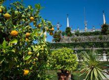 Gärten Borromeo - Lago Maggiore