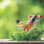 CBD-Öl zur Schmerzlinderung und die häufigsten Anwendungen