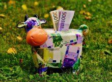 Sparschwein Euros