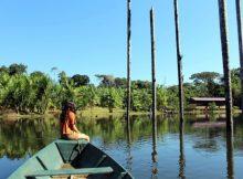 Social Impact Startup socialbnb macht nachhaltiges Reisen einfacher