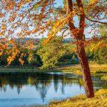 Die schönsten Indian-Summer Farben für zu Hause