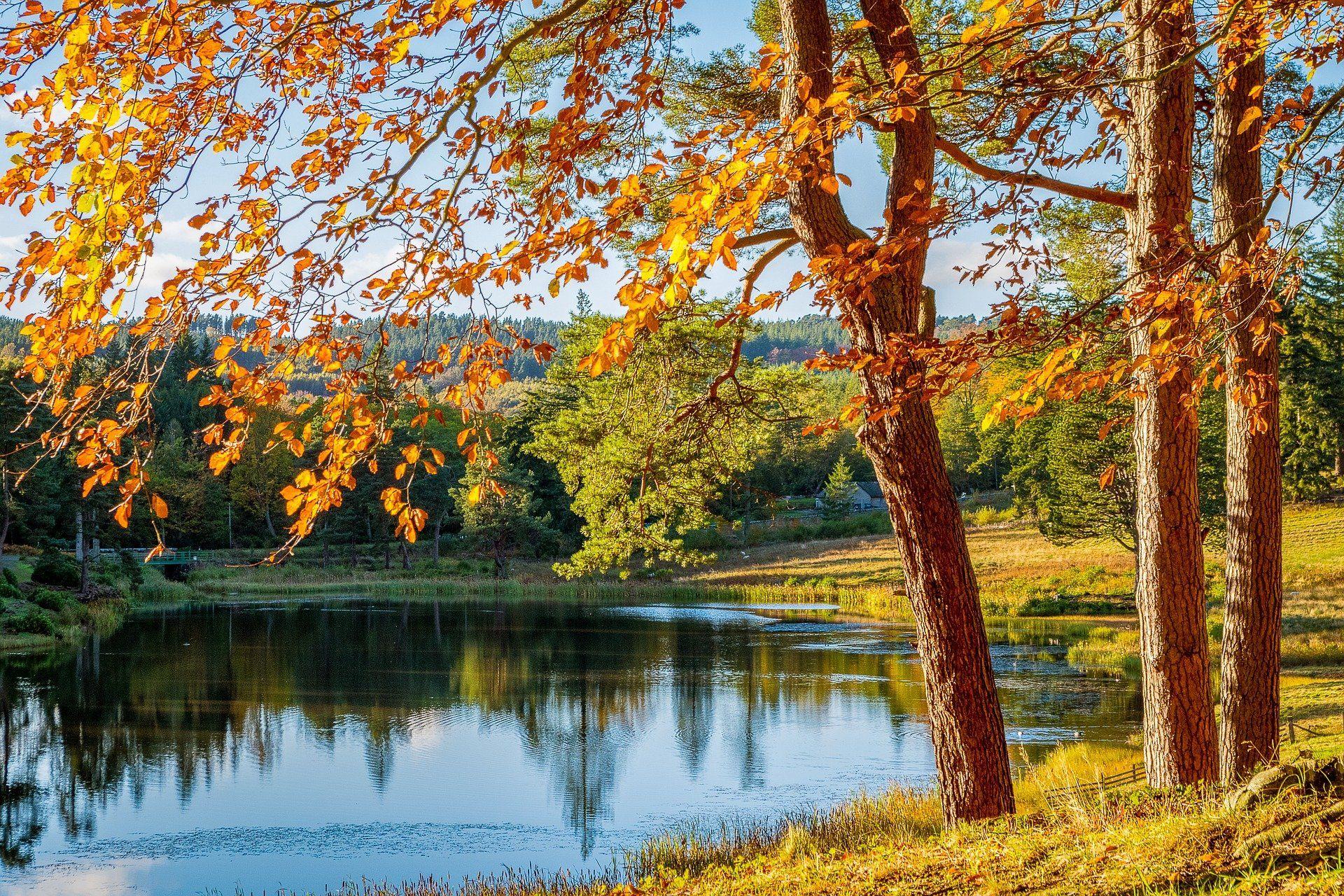 Auch der Herbst hat seine schönen Seiten